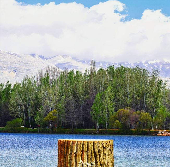 lake lakes forest forests mountains clouds snow trees naturelove... (Taanayel Lake)