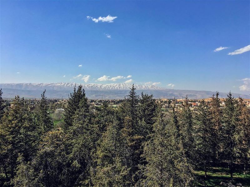 Pristinely Tainted...  nature  naturepics  meadowood  mountainviews ... (Baalbeck, Béqaa, Lebanon)