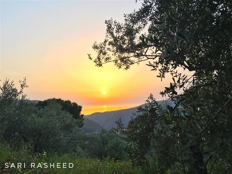 و بحبك ع طريق غياب...  livelovebeirut  livelovebeauty  lebanon  summer ... (Chouf)