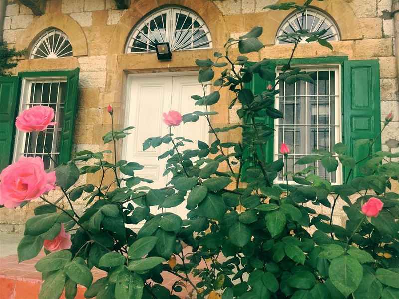 Old But Gold  nature  garden  pink  flowers green  plants  old  house ... (Antoura)
