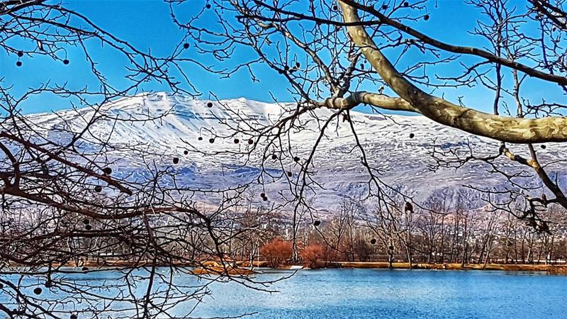 Winter's best  nature  naturephotography  landscape  winter  view  igers ... (Taanayel Lake)