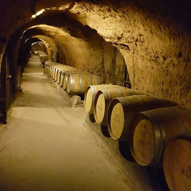 Hundreds of wine barrels inside the caves of Ksara at Château Ksara... (Château Ksara)