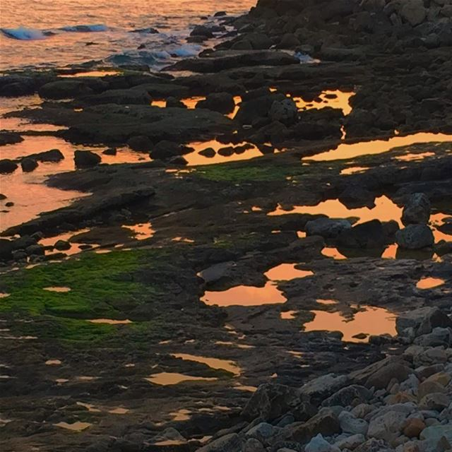 Sunset reflected into small sea puddles at the Mediterranean sea at Amchit... (Amchit)