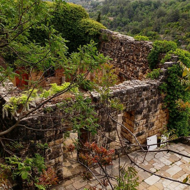 Idiots (in my book) are people who tear down old stone structures and... (Chouf)