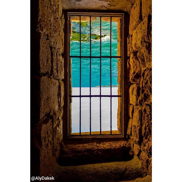 Imagination is a beast that has to be put in a cage. ~ Timothy Spall.... (Sidon Sea Castle)