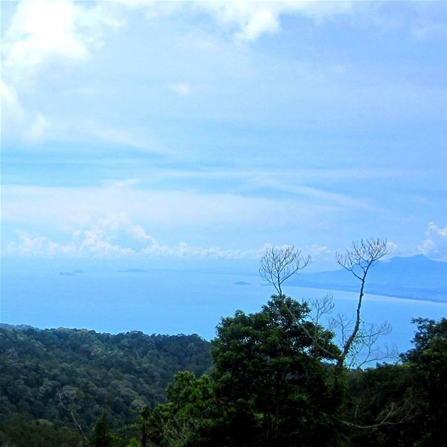 The view, how relaxing is blue. Hammocking there would've been amazing!... (Penang Hill)