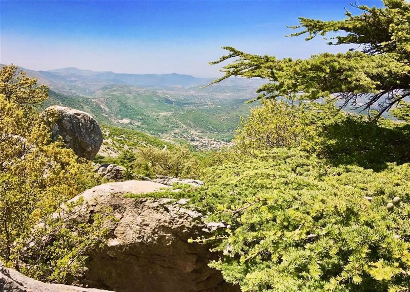 Our target (Maasser El Shouf village) as seen from Lamartine cedar! مشوار م (Arz el Maasser)
