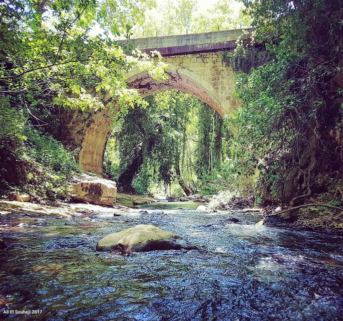 tb  bridge  batlon  mountlebanon  river  old  arch  nature  green  ... (Batloun, Mont-Liban, Lebanon)