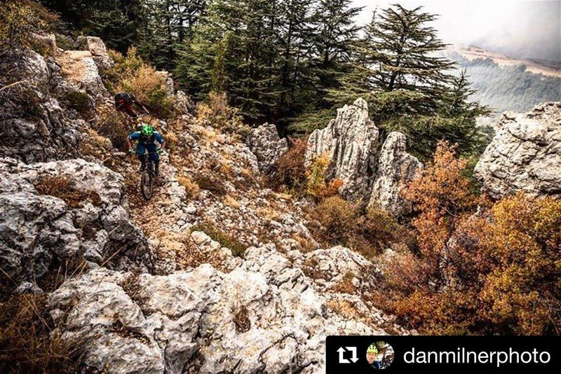 """6 months ago we rode a trail in Lebanon only 50 miles from Syria.... (Tannourine Cedars Nature Reserve)"