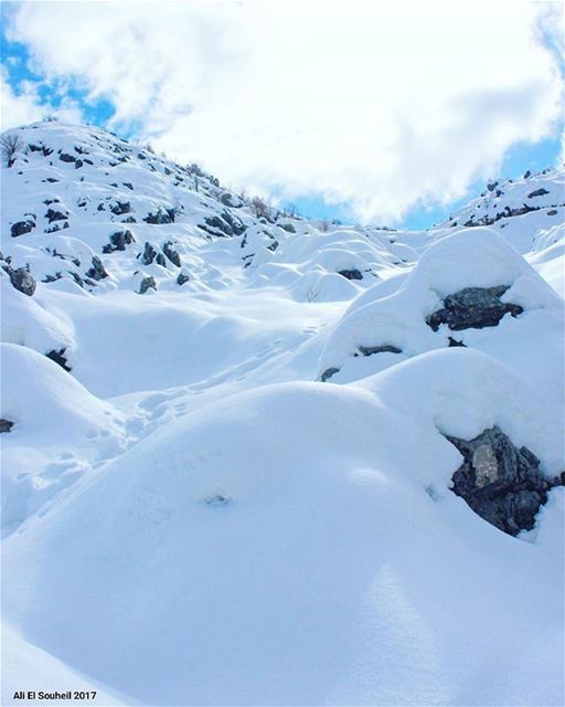 tb  laqlouq  snow  mountains  mountlebanon  winter   nature  lebanon ... (El Laqloûq, Mont-Liban, Lebanon)