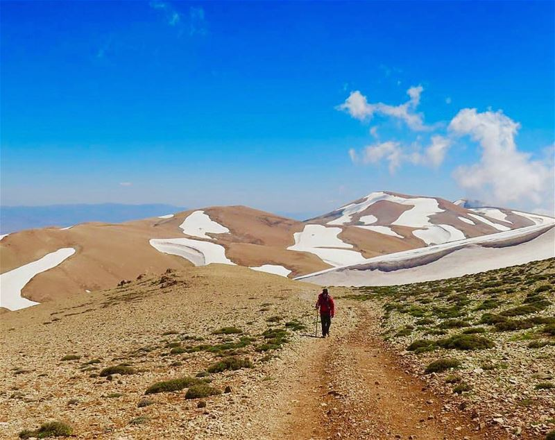 Highest peak in the Middle East: Kornet el Sawda at 3088m 💪🏼 by @georgesb (Cedars Mountains)