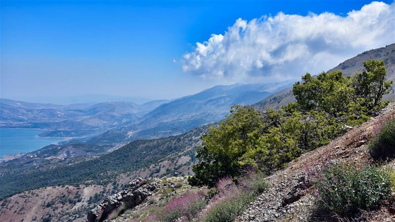 The White Cloud, the Mountainside and the Lake ---------------------------- (Qaraaoun, Béqaa, Lebanon)
