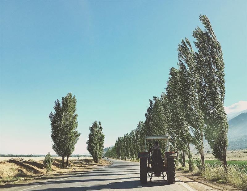 Follow the 🚜 bekaa  tractor  valley  road  outdoor  nature  shadow ... (West Bekaa)