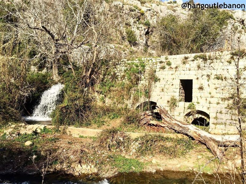 How about  ruines, fresh water and sublime  joz trees on the river shores ! (Nahr el Jaouz)