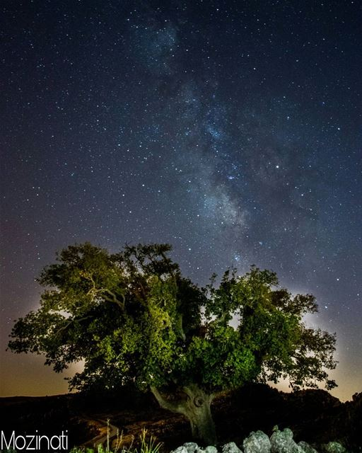 stars star nights night natureloversgallery naturephotography nature... (Jezzîne, Al Janub, Lebanon)