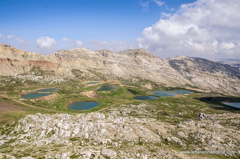 Spring have just started in Laqlouq - The famous Akoura Ponds