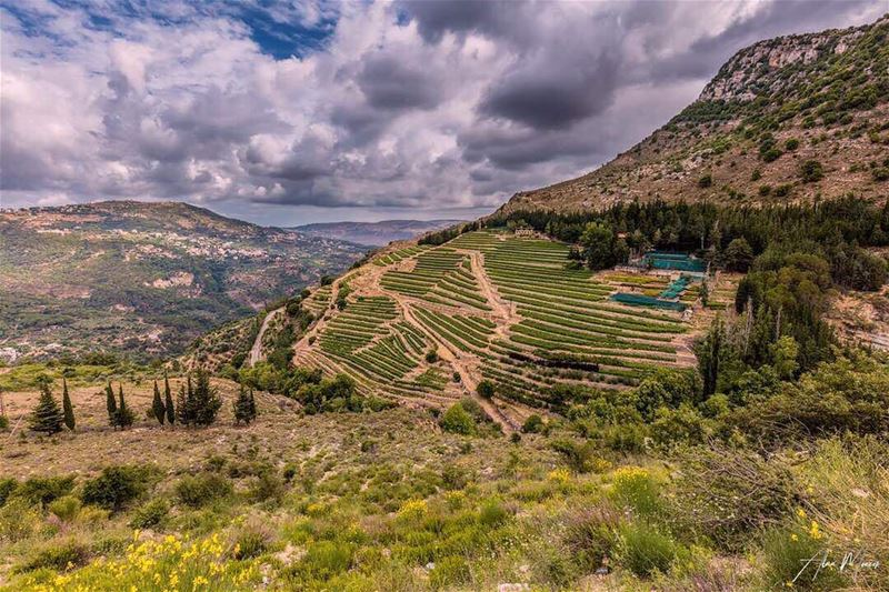 village  lebanon  canon  canonme  worldphotography  worldwide  nature ...