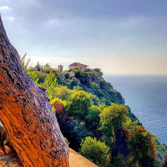 It looks like a  painting 😍Have a good week  igers 😗 mycountrylebanon... (Saydit El Nouriyyeh Chekka)