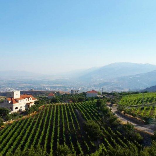 zahle  chateaukhoury  winery  mountains  grapes  clouds  livelovezahle ... (Chateau Khoury)