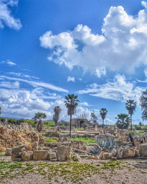 A lot of what is most beautiful about the world arises from struggle -... (Roman ruins in Tyre)