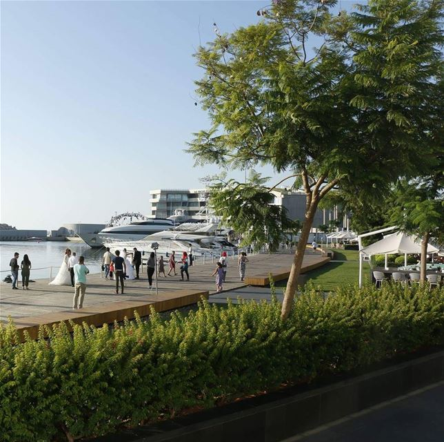 Brides and Yachts... bride  wedding  yacht  marina  love  beirutmarina ... (Zaitunay Bay)