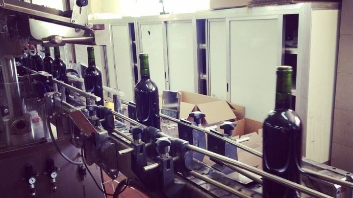 Freshly bottled Chateau Musar 2017 being sent off for labelling 🍷***... (Chateau Musar)
