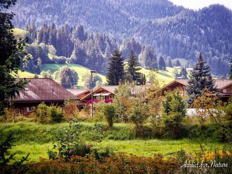 Follow your bliss and the universe will open doors where there were only... (Gstaad)