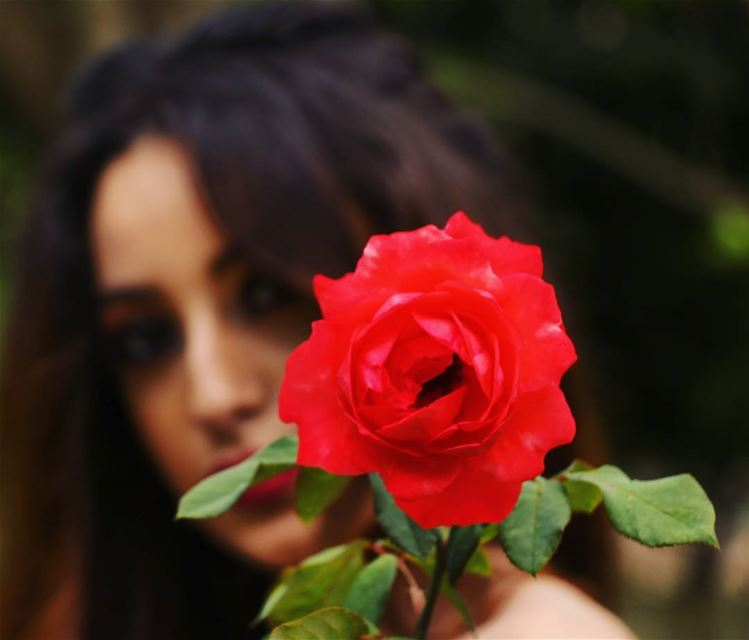 She's the flower , and am her thornes .  flower  rose  flora  fleur ...