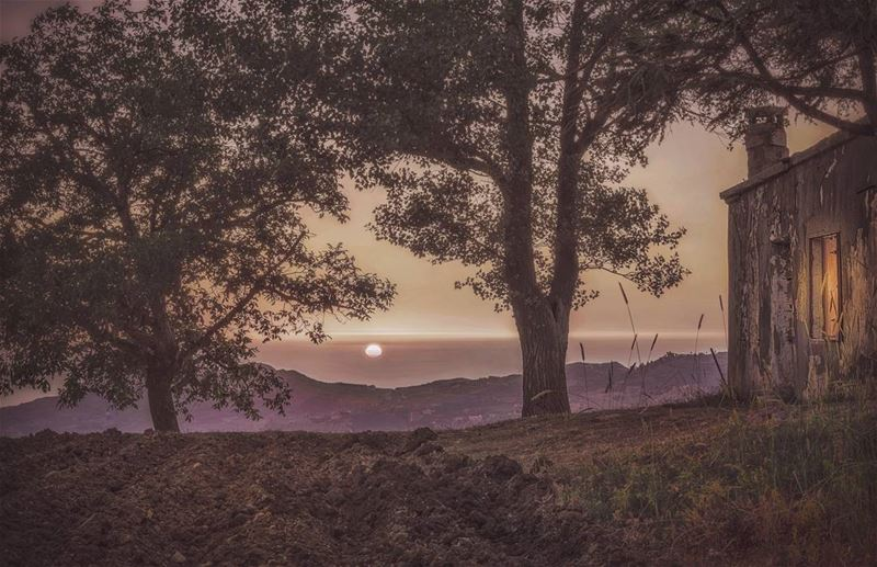 landscape sunset goldenhour mountain view nature naturelovers twilight...