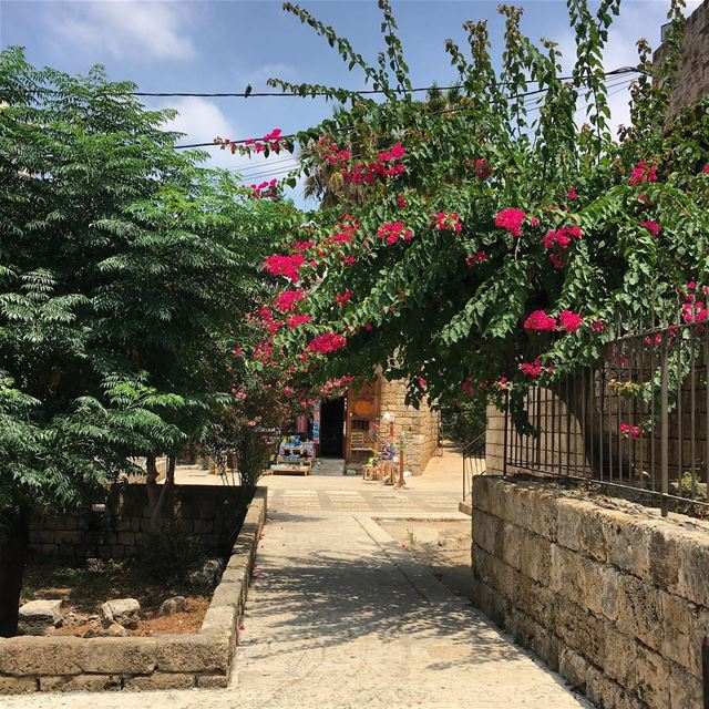 Byblos  jbeil  livelovebyblos  livelovetrees  oldtown  kings_town  ... (Byblos - Jbeil)