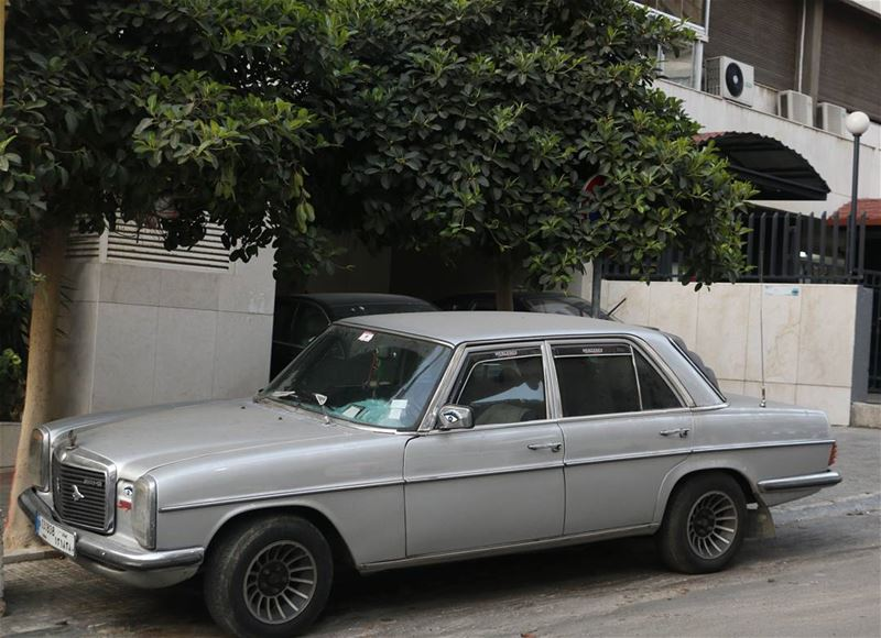 50 shades of Grey... One of them is this handsome boy:)  vintage  cars ... (Beirut, Lebanon)