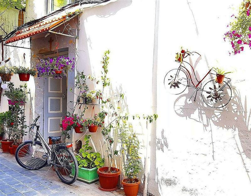 Sundays should come with a pause botton !⏸Enjoy your day everyone 🌞🏡🚴‍♂
