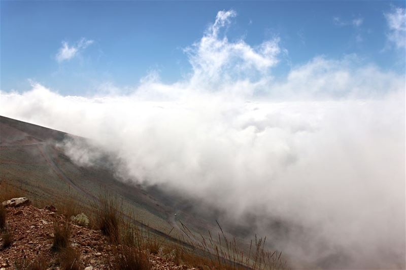 The Road above the Clouds clouds  white  road  skies  blue  cloudnine ... (Lebanon)