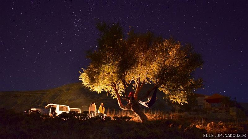Leave the house and Spend the night under the stars.. night  photo ... (Salib Bekish)