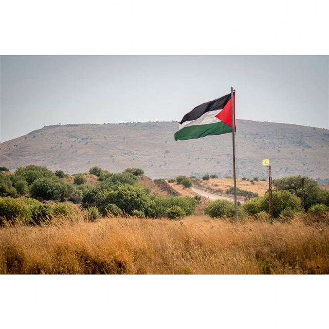 The occupied lands of palestine from the lebanese borders  palestine ... (Aytaroun عيترون)