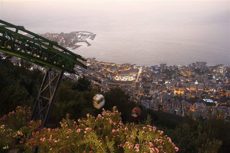 Life goes by with its joy and light as we live through it like the... (Harissa Teleferque)
