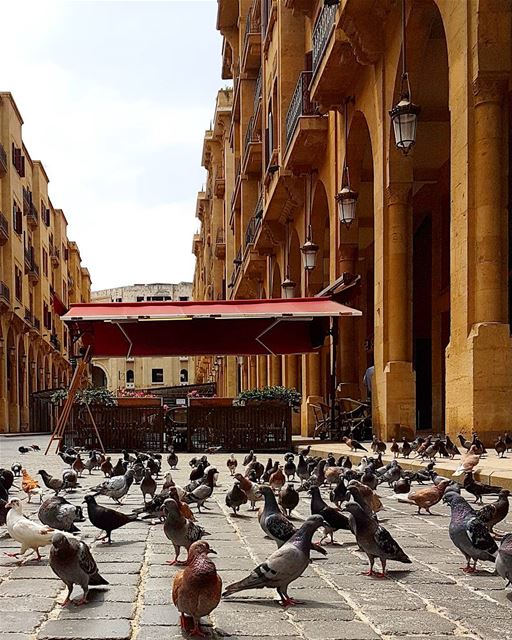 ... A busload of tourists in downtown Beirut 🦅 😄------.. Lebanon_HDR... (Downtown Beirut)