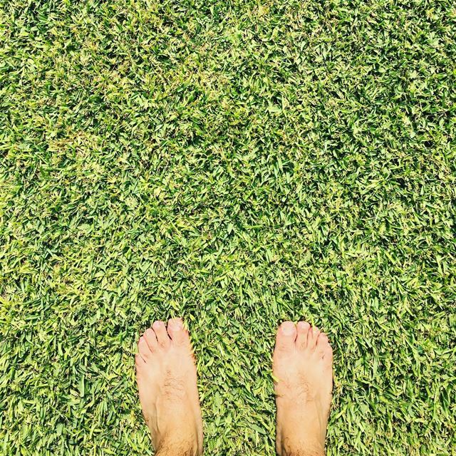 Get Your Feet In The Nature. lazyb  lazy  beach  sea  pool  grass  feet ... (Lazy B)