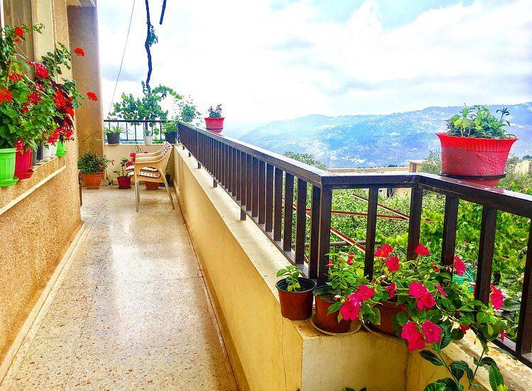 وردات الدار 🌺🍀 August  balcony   flowers  plants  afternoon  lebanon ... (Mount Lebanon)
