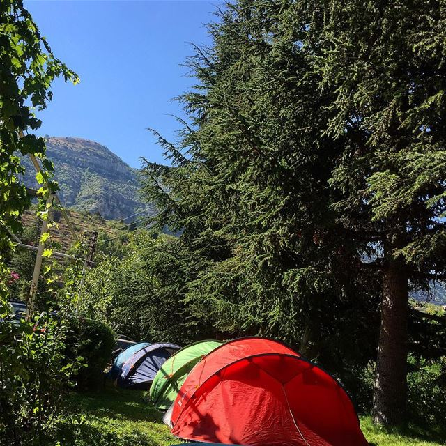 Camping in the midst of  nature @guitabedandbloom is a great way to ... (Majdel el-Aqoura)