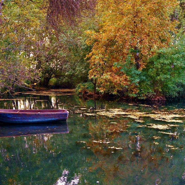 Anjar  anjar  Bekaa  reserve  boat  autumn  foliage  nature  liveloveanjar...