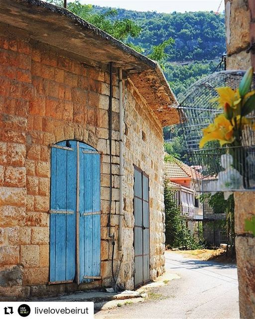 Repost @livelovebeirut・・・A little walk in the tiny streets of @livelove. (Douma, Liban-Nord, Lebanon)