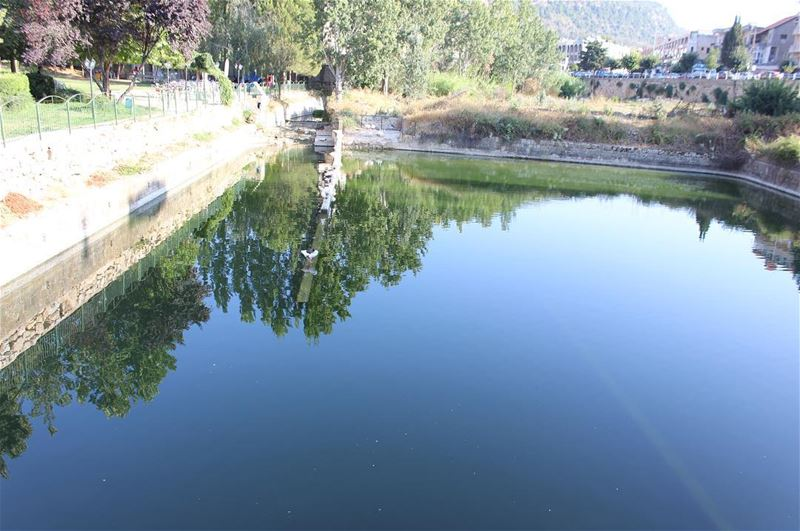 water  reflection  waterfront  tree  lake  nature  outdoors  day  beauty... (Jezzîne, Al Janub, Lebanon)