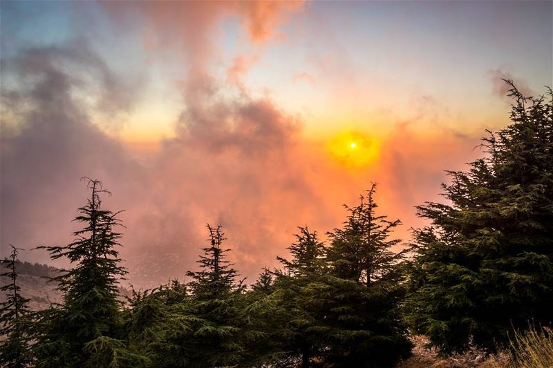 .The golden hour, Beautiful sunset at the top of Mount Barouk Cedar...