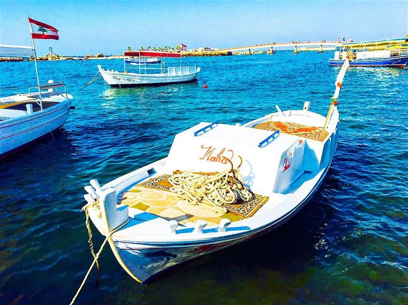 Boats wait in Tripoli's harbour to take Eid revellers on trips around the... (Tripoli, Lebanon)