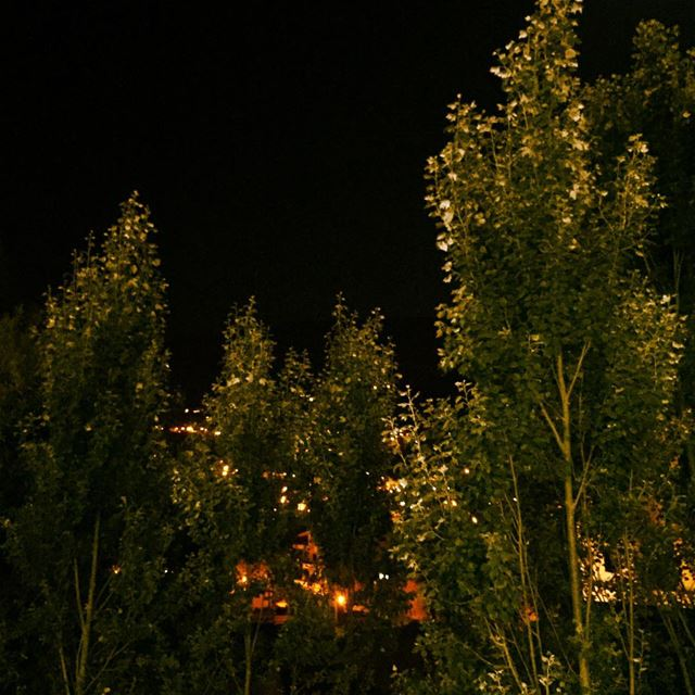 nature  green  trees  light  lights  village  mountain  Faraya  Lebanon ... (Faraya, Mont-Liban, Lebanon)