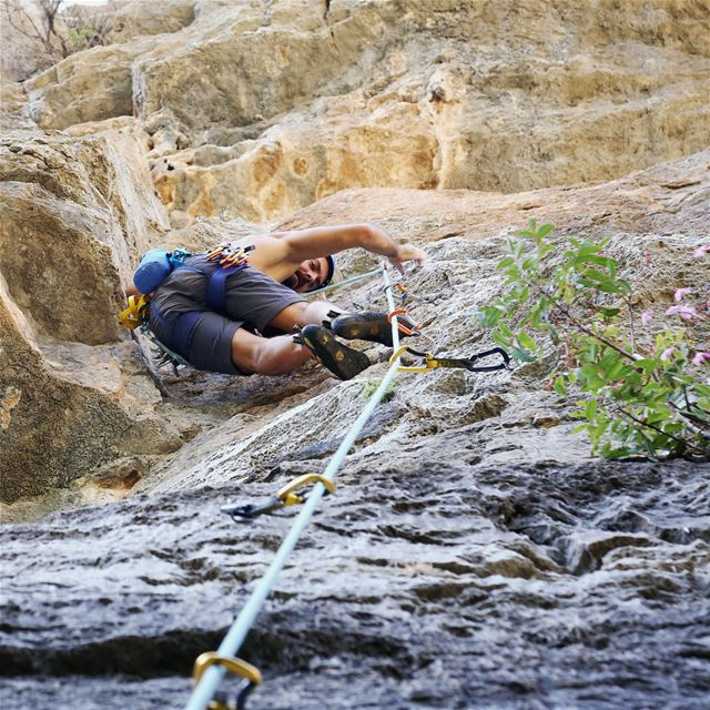 Pinch it and lean against it 👌  climbing  rockclimbing  tannourine ... (Tannoreen)