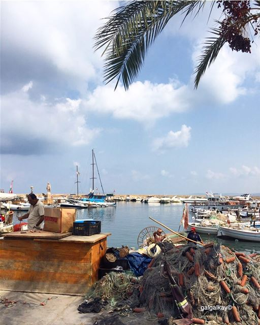 Tyre fishing harbor ..... lifewelltraveled  traveltheglobe ...