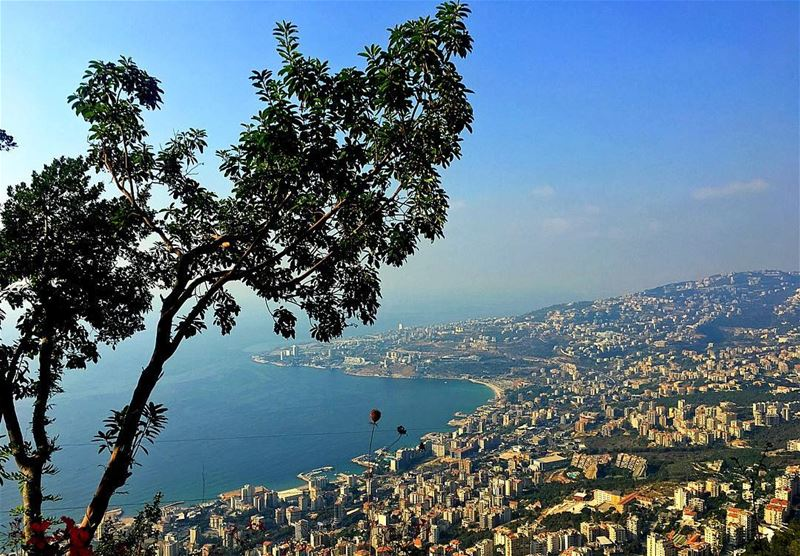 Beautiful things don't ask for attention 🌲☀️🌊  harissa  jounieh  lebanon... (Harîssa, Mont-Liban, Lebanon)