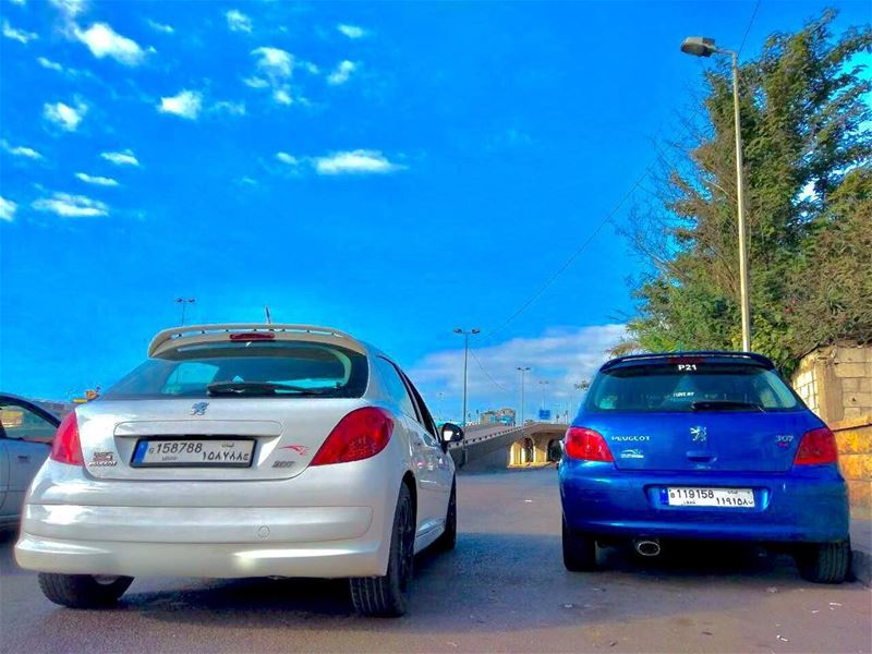 Partners of crime  psl  pride  parking  passion  peugeot  blue  white ...